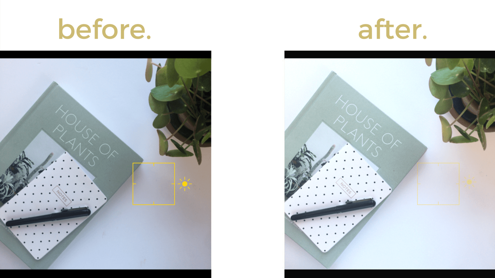 Use your phone camera's own tools to brighten your Instagram photo white background.